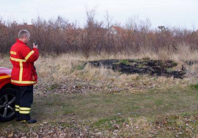 Mindre naturbrand i Korsør Bypark