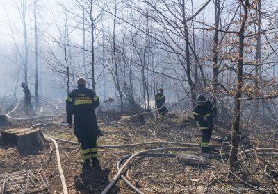 Større skovbrand i Broby Overdrev ved Sorø.